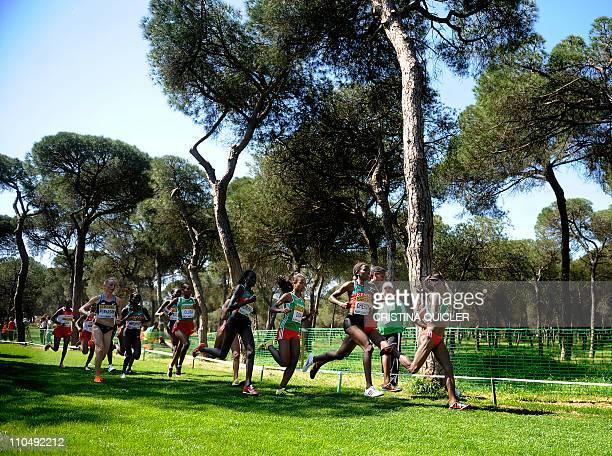 Kenyan Vivian Jepkemoi Cheruiyot competes to won the gold medal at the women's senior race during the World Cross Country Championships at Punta...