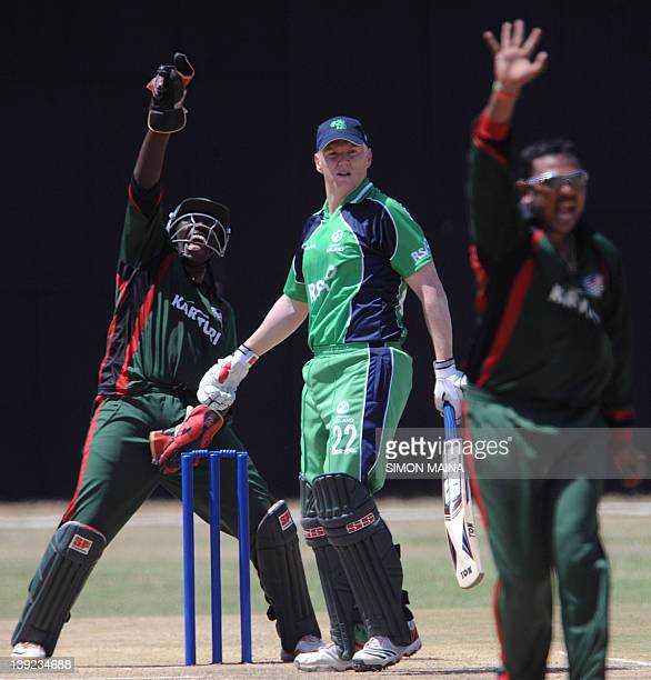 Kenya's bowler Hiren Viraiya and wicketkeeper David Obuya unsuccessfuly appeal against Ireland's batsman Kelvin Obrien during a oneday international...