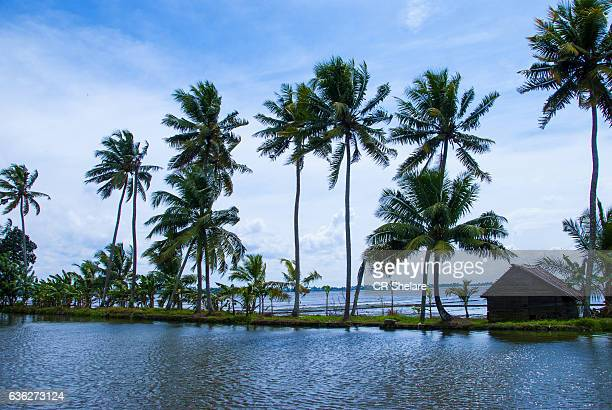 Kerala backwater major tourist attraction, Alleppey, Kerala, India.