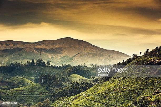 Kerala Mountains