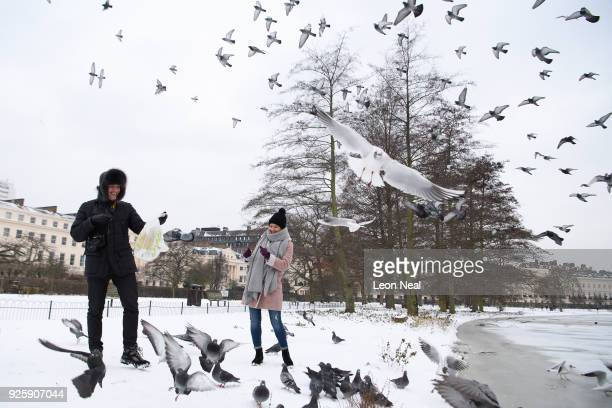 Kerim Erturan and Elena Rya feed the birds next to a frozen lake in Regents Park on March 1, 2018 in London, United Kingdom. Freezing weather...