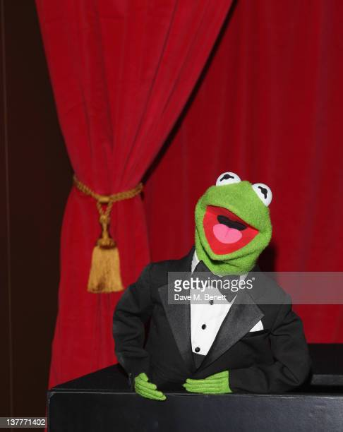 Kermit the Frog attends the UK premiere of 'The Muppets' at The Mayfair Hotel on January 26 2012 in London England