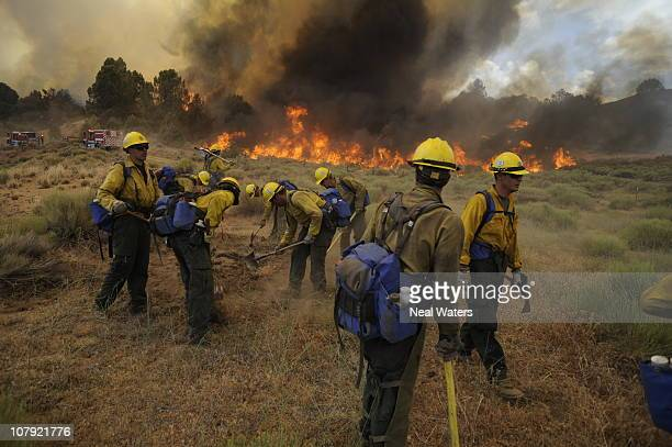 Kern County Fire Department's Rio Bravo hotshot crew puts out a spot fire ahead of the main West Fire in late July 2010 near Tehachapi Calif