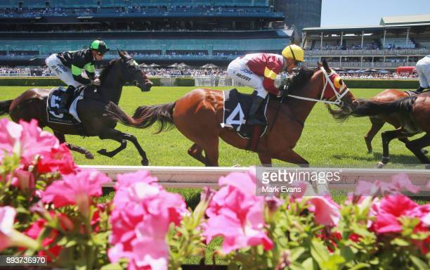 Kerrin McEvoy on Vassal goes around the first time before winning race 3 The Christmas Cup during Sydney Racing at Royal Randwick Racecourse on...