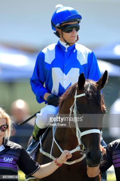 Kerrin McEvoy on Winx before a gallop during Sydney Racing at Rosehill Gardens on March 17 2018 in Sydney Australia