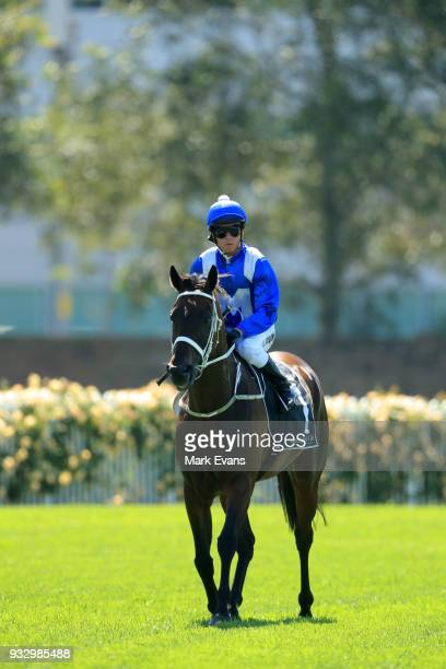 Kerrin McEvoy returns from riding Winx in a gallop during Sydney Racing at Rosehill Gardens on March 17 2018 in Sydney Australia