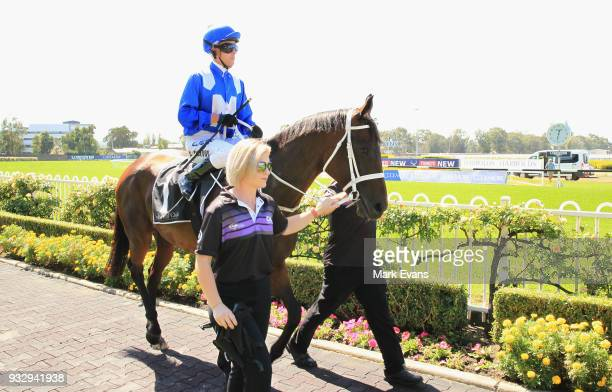 Kerrin McEvoy rides Winx before a gallop during Sydney Racing at Rosehill Gardens on March 17 2018 in Sydney Australia