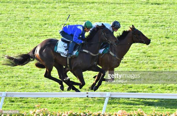 Kerrin McEvoy riding Rimraam gallops with Regan Bayliss riding Pure Scott during a trackwork session at Flemington Racecourse on October 31 2017 in...