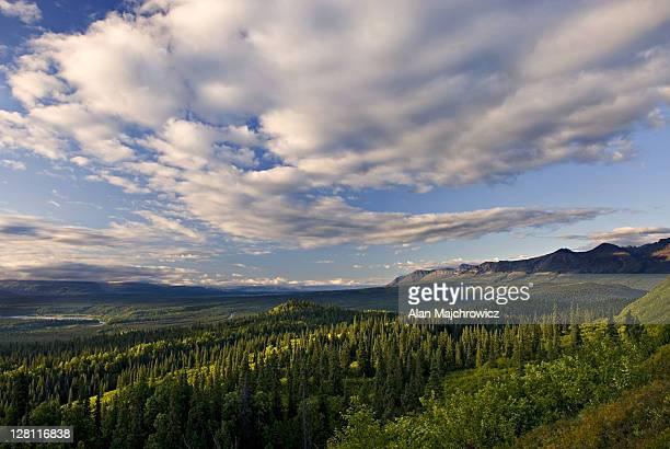 Kesugi Ridge, Denali State Park, Alaska. USA