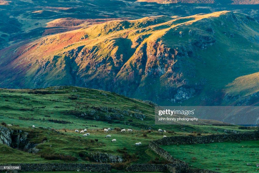 Keswick landscape. Lake District National park. UK. : Stock Photo