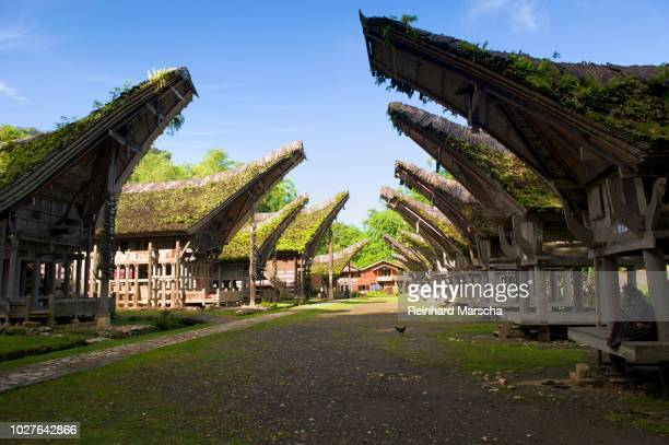 ke'te kesu' village with traditional toraja houses near rantepao, sulawesi, indonesia, southeast asia - rantepao stock photos and pictures