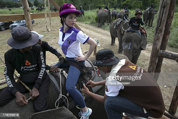 Kevin a Filipino ladyboy who is part of a polo team gets strapped in as she sits on an elephant on August 28 2013 in Hua Hin Thailand This is the...