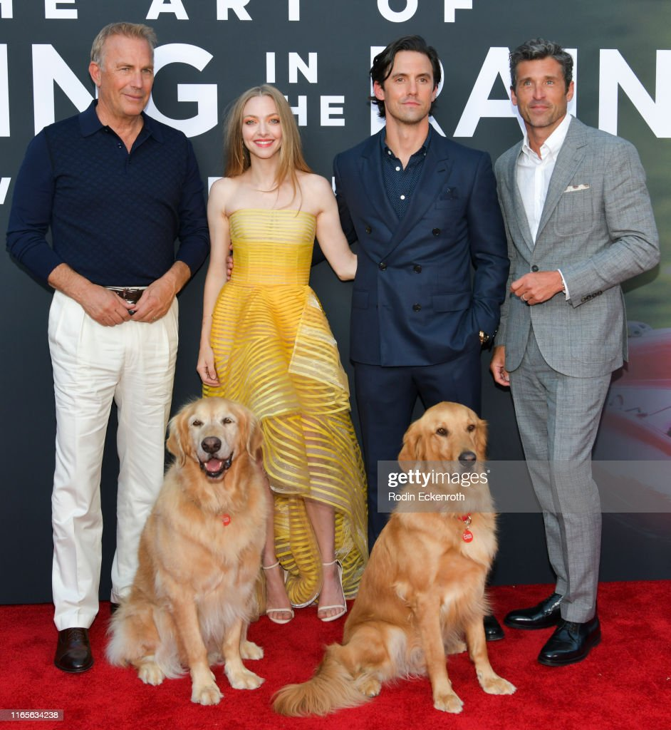 """Premiere Of 20th Century Fox's """"The Art Of Racing In The Rain"""" - Red Carpet : News Photo"""