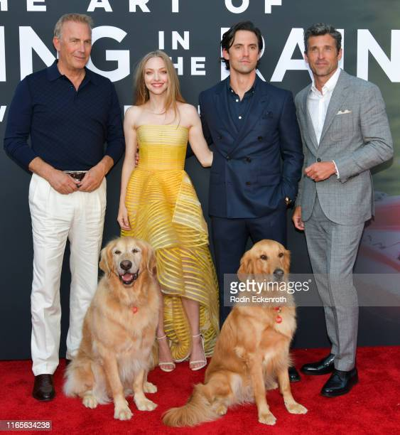 "Kevin Costner, Amanda Seyfried, Milo Ventimiglia, and Patrick Dempsey attend the premiere of 20th Century Fox's ""The Art of Racing in the Rain"" at El..."