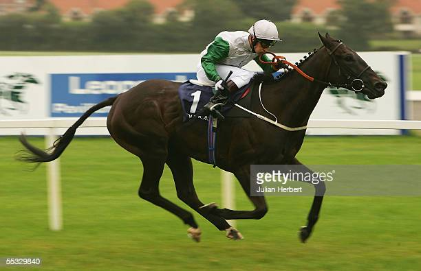 Kevin Darley and Attraction land The Coolmore Fusaichi Pegasus Matron Stakes Race run at Leopardstown Racecourse on September 10 2005 in Dublin...
