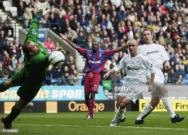 Kevin Davies of Bolton looks on as his header beats Gabor Kiraly of Crystal Palace during the FA Barclays Premiership match between Bolton Wanderers...