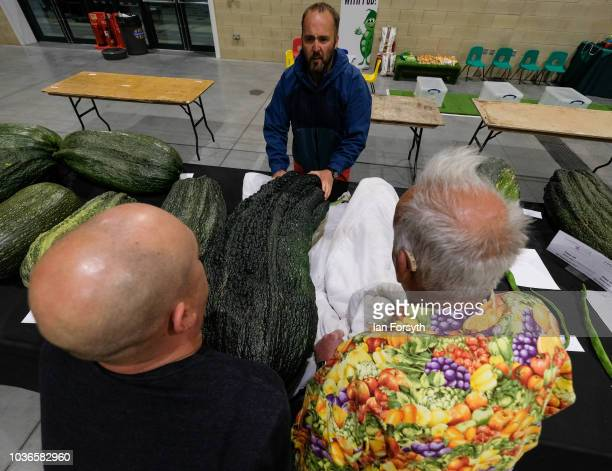Kevin Fortey and Ian Neale are helped by Chris Marriot to arrange a giant marrow as they arrive overnight for the giant vegetable competition on the...