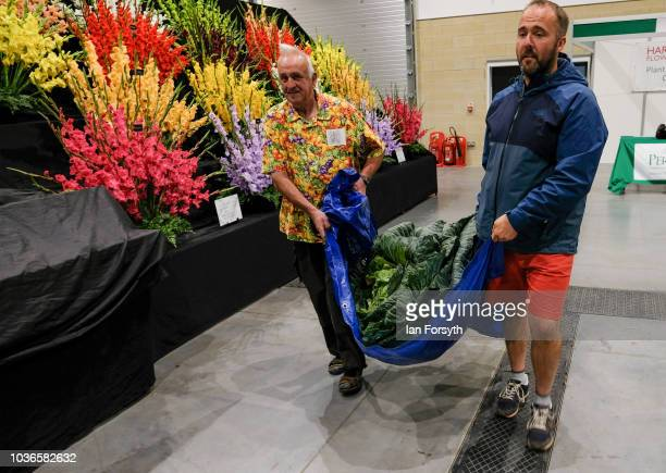 Kevin Fortey and Ian Neale from Newport arrive overnight with a Giant cabbage as they prepare for the giant vegetable competition on the first day of...