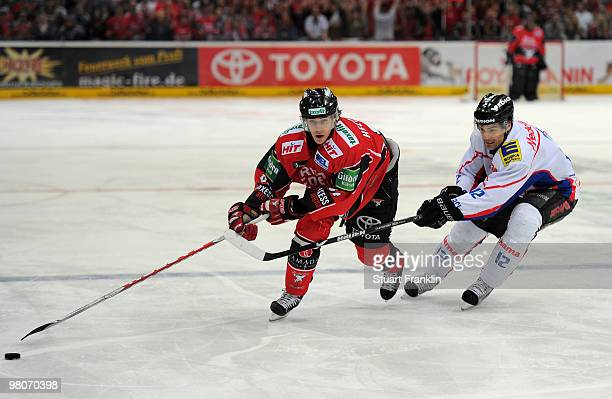 Kevin Hecquefeuille of Cologne challenges for the puck with Tyler Bouck of Ingolstadt during the DEL playoff match between Koelner Haie and ERC...
