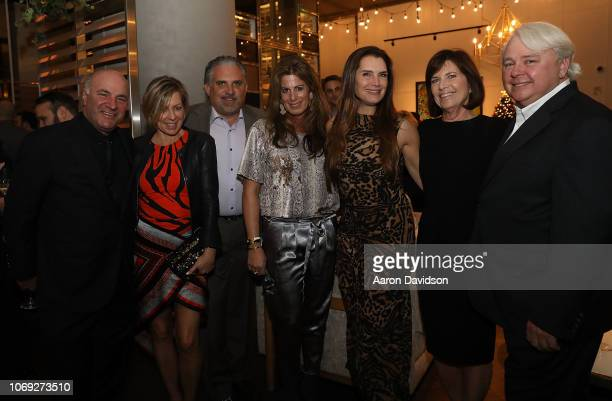 Kevin O'Leary Linda O'Leary Nick Korniloff Pamela Cohen Brooke Shields Dennis Scholl and Debra Scholl attends Art Miami 2018 Lifetime Visionary Award...