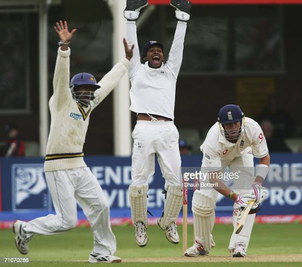 Kevin Pietersen of England is given out during the 4th day of the 2nd Test Match between England and Sri Lanka at the Edgbaston Cricket Ground on May...