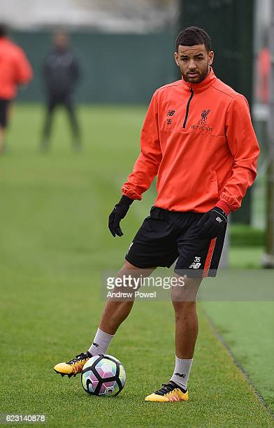 Kevin Stewart of Liverpool during a training session at Melwood Training Ground on November 14 2016 in Liverpool England