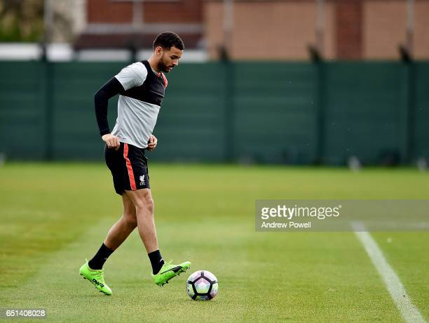 Kevin Stewart of Liverpool during a training session at Melwood Training Ground on March 10 2017 in Liverpool England