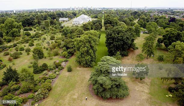 Kew Gardens is seen from the Japanese pagoda July 4 2003 in London Kew Gardens has been awarded World Heritage Site status by the UNESCO world centre...
