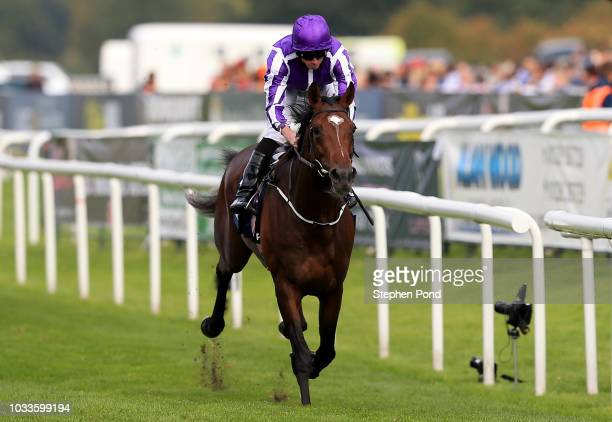 Kew Gardens ridden by jockey Ryan Moore wins the William Hill St Leger Stakes at Doncaster Racecourse on September 15 2018 in Doncaster England