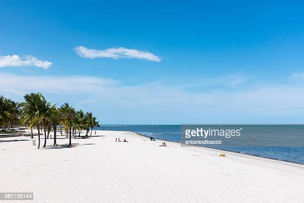 key biscayne beach - key biscayne stock pictures, royalty-free photos & images