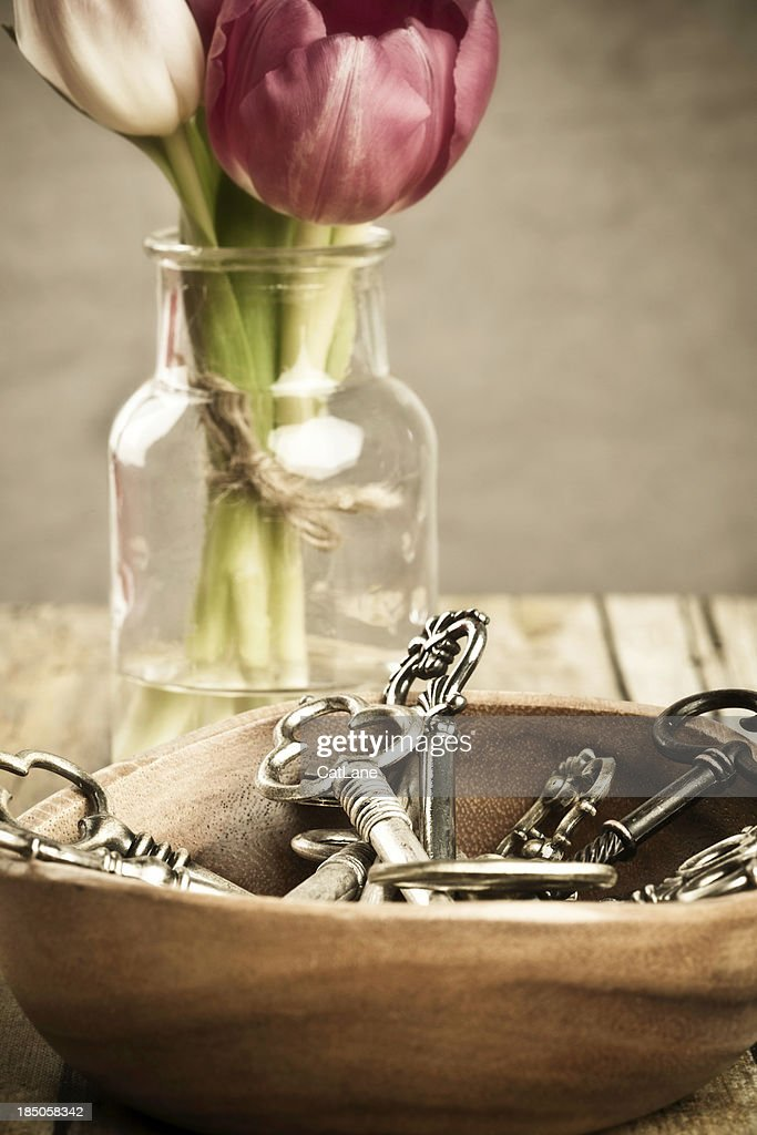 Key Collection and Tulips : Stock Photo