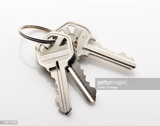 Key Ring on White