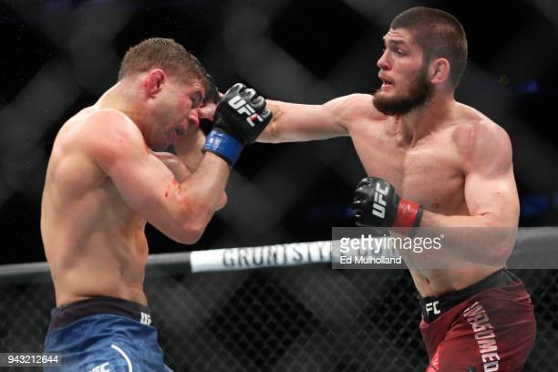 Khabib Nurmagomedov lands a right hand to the head of Al Iaquinta during their UFC lightweight championship bout at UFC 223 at Barclays Center on...