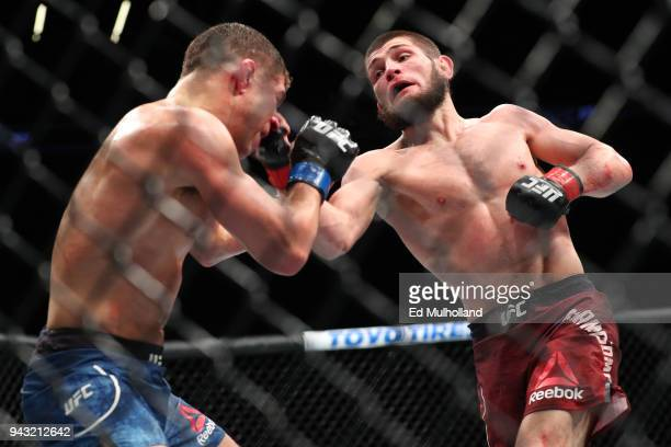 Khabib Nurmagomedov lands a right uppercut on Al Iaquinta during their UFC lightweight championship bout at UFC 223 at Barclays Center on April 7...