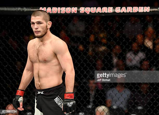 Khabib Nurmagomedov of Russia looks on against Michael Johnson of the United States in their lightweight bout during the UFC 205 event at Madison...