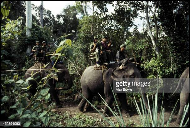 Khmer Rouge guerrillas of the ousted Pol Pot regime ride 'war elephants' through the jungle of western Cambodia, 10th February 1981.