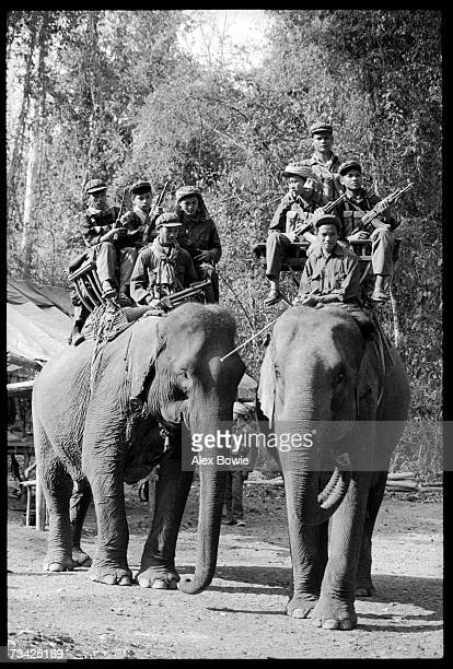 Khmer Rouge guerrillas of the ousted Pol Pot regime ride 'war elephants' through the jungle of western Cambodia 15th February 1981