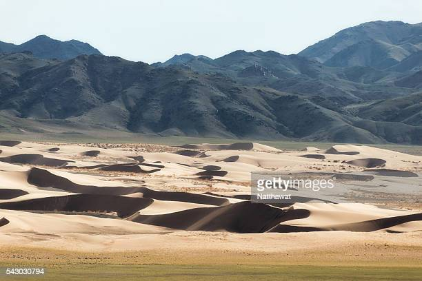 khongoryn els sand dunes, mongolia - omnogov stock pictures, royalty-free photos & images