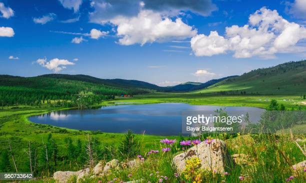 khukh nuur, the blue lake, green vegetation, mongolia - モンゴル ストックフォトと画像