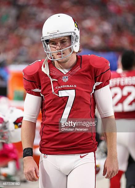 Kicker Chandler Catanzaro of the Arizona Cardinals during the NFL game against the Washington Redskins at the University of Phoenix Stadium on...