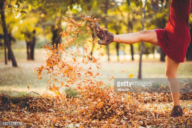 kicking heap of dry leaves - kicking stock pictures, royalty-free photos & images