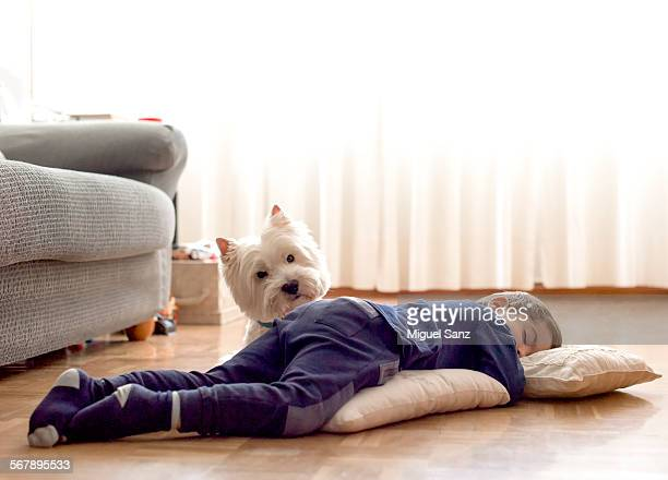kid, 3 years, sleeping on the floor and his westie