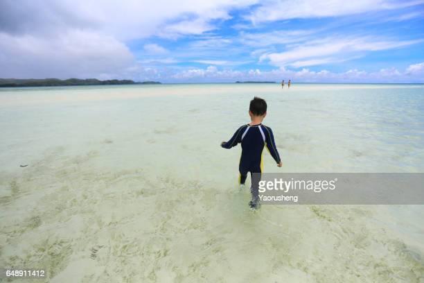 kid boy walking the tropical beach