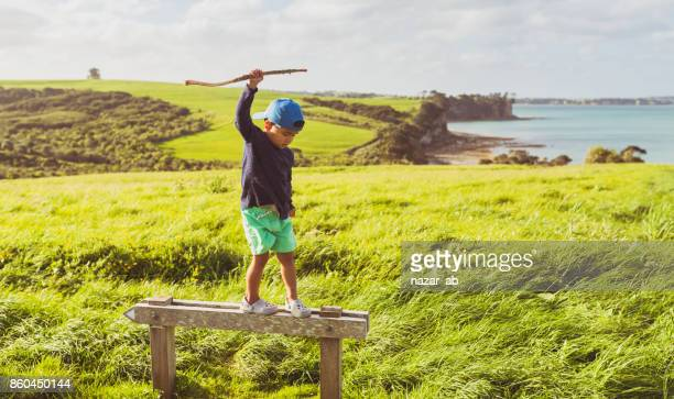 Kid climbed on a sign with scenic view in background.