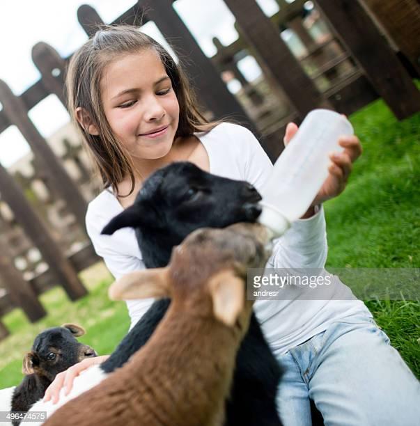 Kid feeding a baby goat