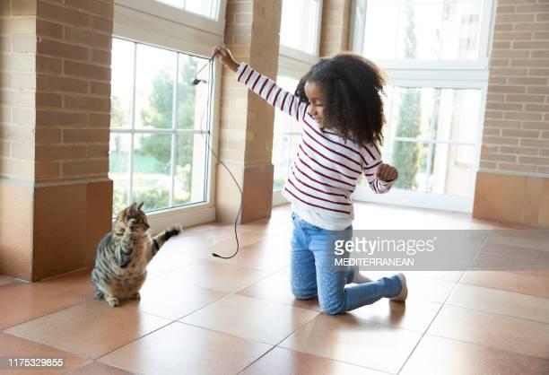 niña jugando con el gato sosteniendo el cable - felino fotografías e imágenes de stock