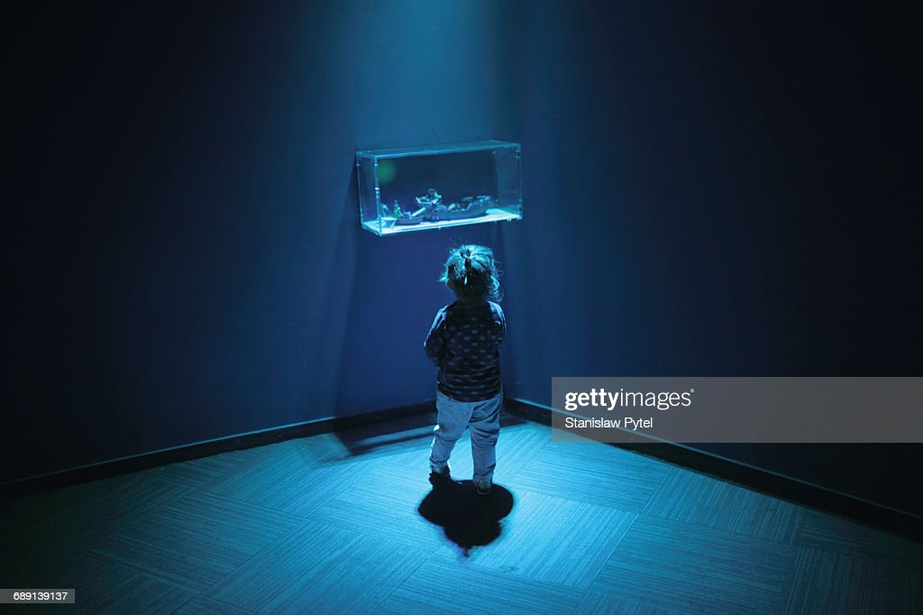 Kid looking at exhibition, blue light : Stock Photo