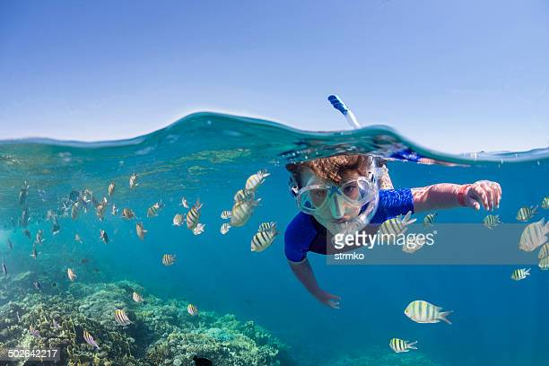 kid on the reef - snorkeling stock pictures, royalty-free photos & images