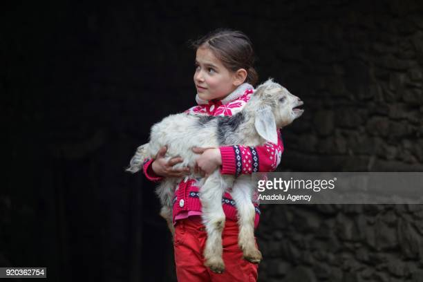 A kid poses for a photo holding a goat between stone houses at her village at Hizan district in the southeastern province of Bitlis Turkey on...