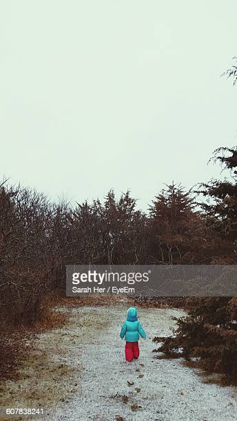 kid standing on field amidst trees against clear sky during winter - unknown gender stock pictures, royalty-free photos & images